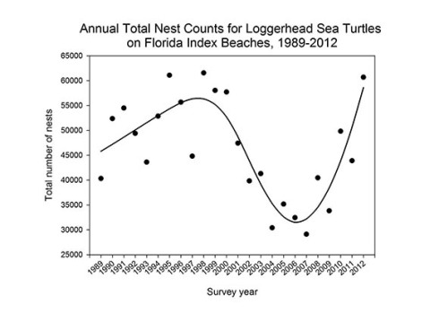 Annual Total Nest Counts for Loggerhead Sea Turtles